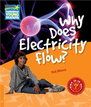 factbook level 6 why does electricity flow cambridge young readers - ISBN: 9780521137485